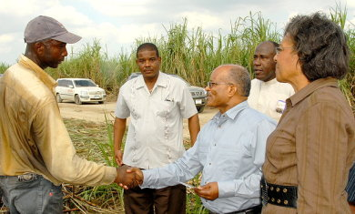 Governor General, His Excellency the Most Hon. Professor Kenneth Hall (2nd right) shakes the hands of Orville Clarke (left) cane cutter, during a tour of the Frome Sugar Factory in Westmoreland. Looking on are Mrs. Rheima Hall (right), wife of the Governor General; Aston Smith (third right), Vice President of Operations at Frome; and Sergeant Wint, member of the Governor General's security team.