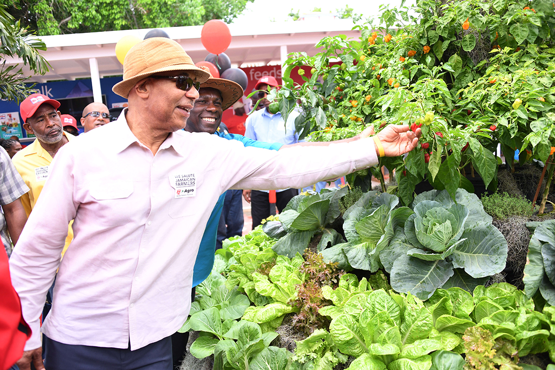 His Excellency Sir Patrick Allen picks a pepper from a display during his tour of the Denbigh Agricultural, Industrial and Food Show in Clarendon on Sunday (August 6, 2017).